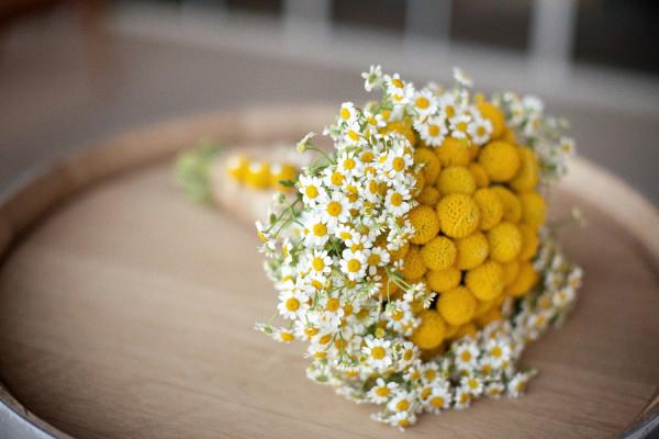 """buket-nevesty-kraspediya Свадьба в стиле """"Краспедия"""": украшаем свадьбу яркими и необычными цветами"""