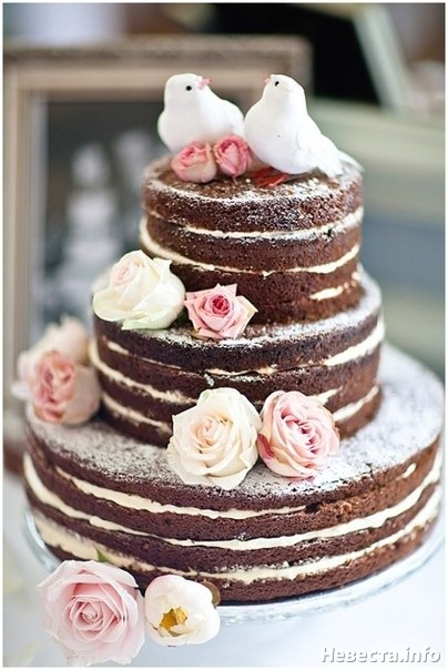 golyj-tort-shokoladny Новая мода - голые торты
