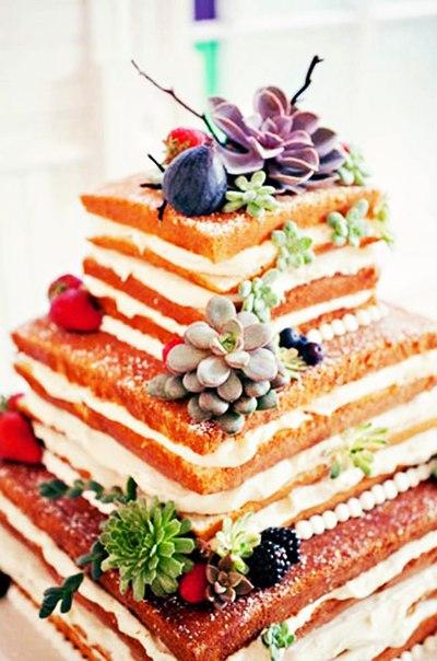kvadratnyj-golyj-tort Новая мода - голые торты