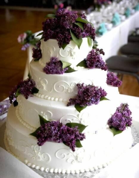 """tort-siren Свадьба в стиле """"Сирень"""": используем цветы сирени и сиреневый цвет"""