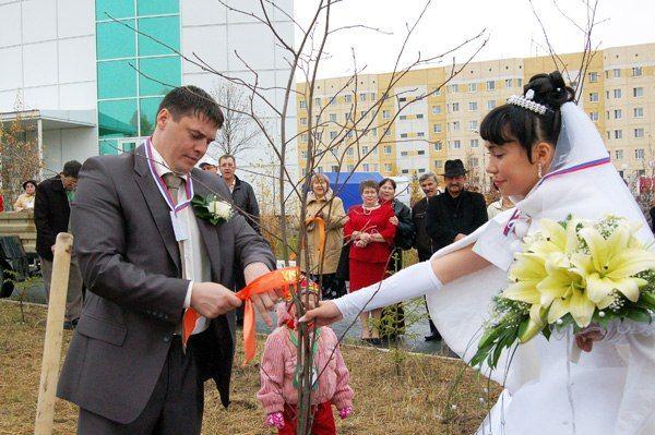Свадебная традиция в подвязывании ленточки на дерево