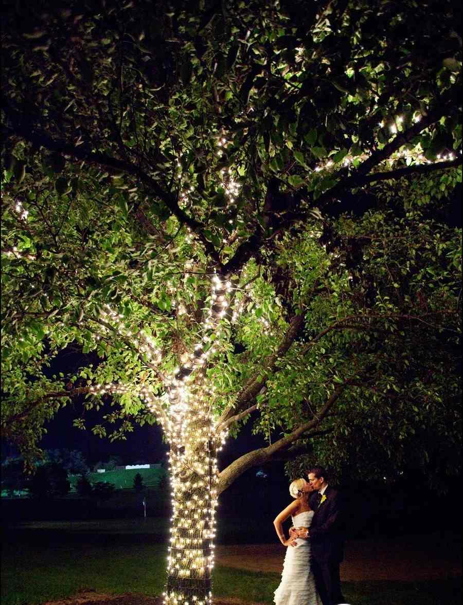 5136.900x1312.1407785233 Световой декор свадьбы