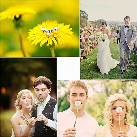 Яркая свадьба с одуванчиками