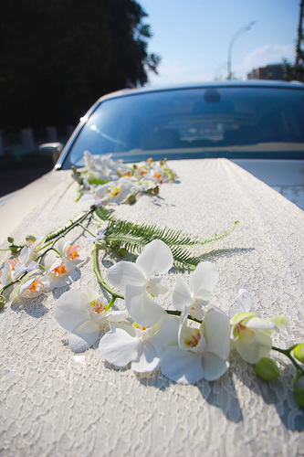 dekor-avtomobilya-orhideyami Обзорная статья о стилях свадьбы