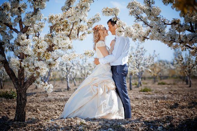 Плюсы и минусы свадьбы в мае