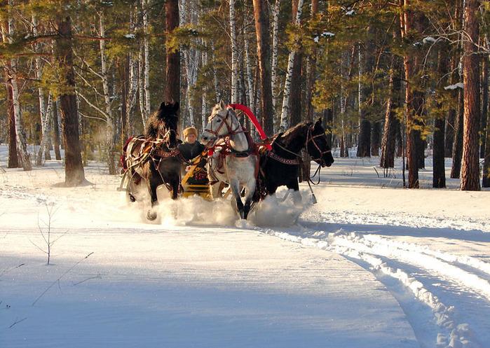 66895891_troika5 Развлечение на зимней свадьбе для гостей и молодоженов