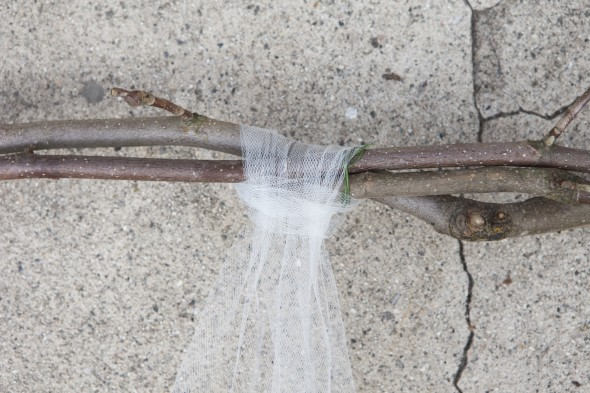fotostena-na-svadbu-iz-magnolii-8 Мастер класс: фотостена для свадебной фотосессии из магнолии