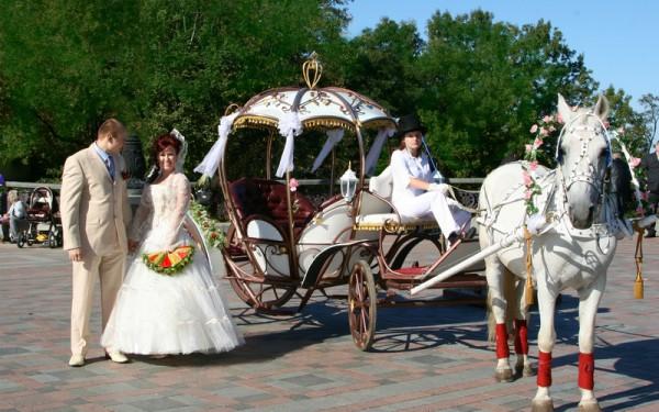 Конная упряжка, как вариант свадебного кортежа