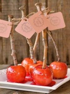 KquyhNVRCGo-225x300 Сочная свадьба в яблочном стиле