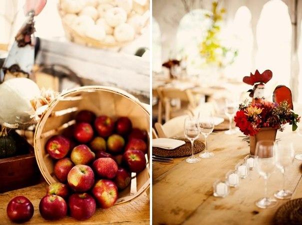 QO0CLBoBDVU Идеи для свадеб со стилем, тематические свадьбы