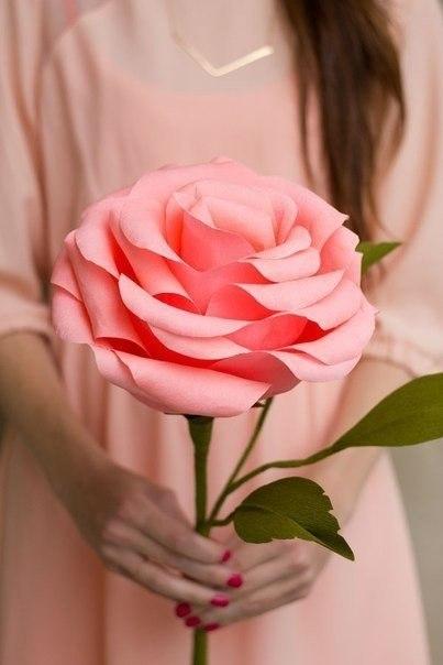 roza Мастер класс: розы из креповой бумаги для декора свадьбы