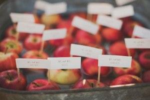 zSMuhg6OPQI-300x200 Сочная свадьба в яблочном стиле