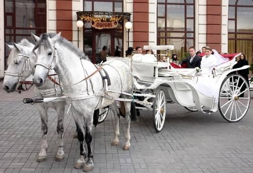 Карета вместо лимузина: стоит ли заказывать на свадьбу?
