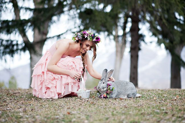 Fotopodborka-zhivotnye-na-svadbe2 Фотоподборка: животные на свадьбе