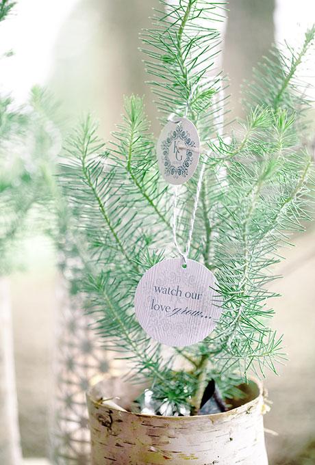 Neskolko-idej-dlya-zimnej-svadby11 Несколько идей для зимней свадьбы часть 2