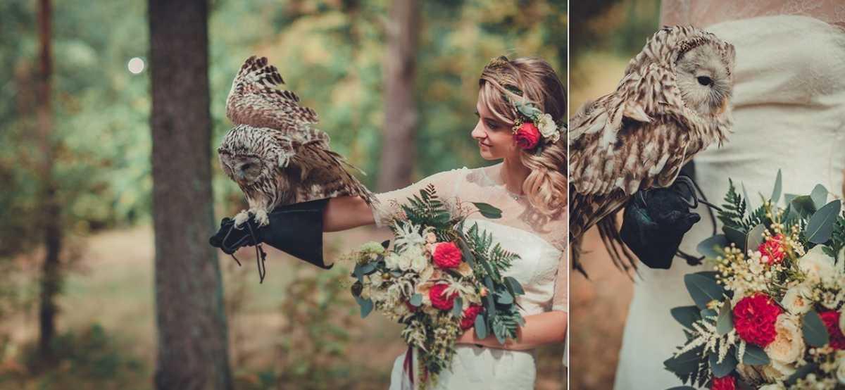 Удивительная свадебная фотосессия с живыми совами