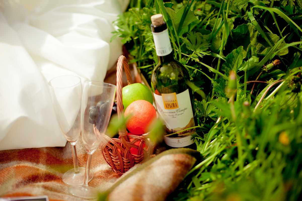 piknik-na-svadbe Свадебная фотосессия в форме пикника, сочетаем приятно с полезным