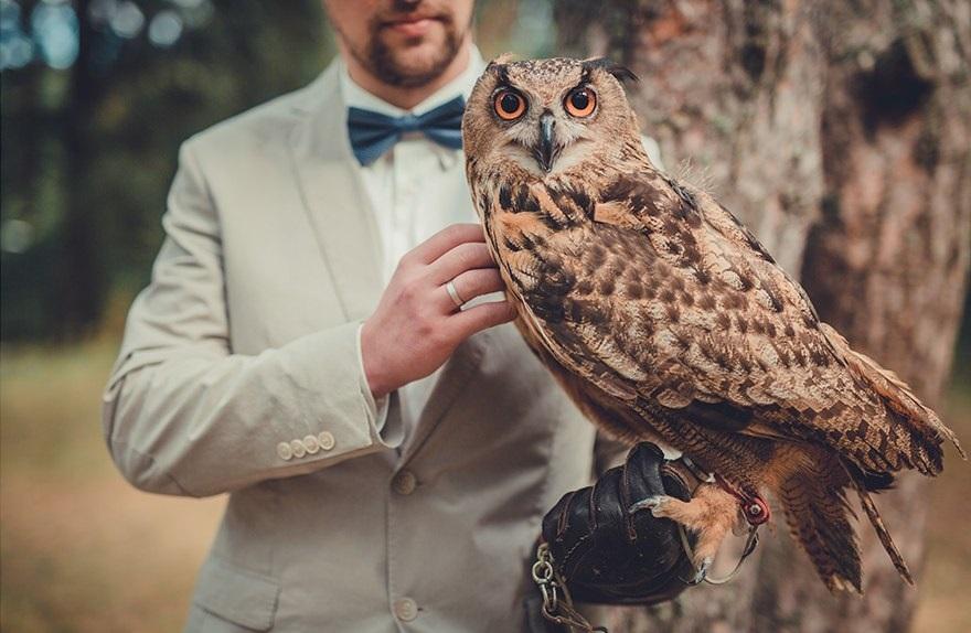 sova-na-fotosesii-zheniha-i-nevesty Удивительная свадебная фотосессия с живыми совами