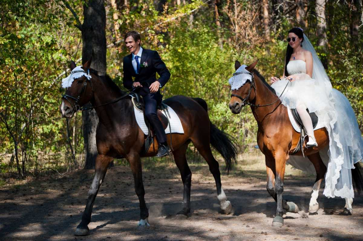 svadebnaya-fotosessiya-na-konyah Свадебная фотосессия с лошадьми