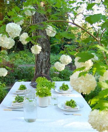 servirovka-svadebnogo-stola-v-eko-stile-9 Сервировка свадебного стола в эко стиле