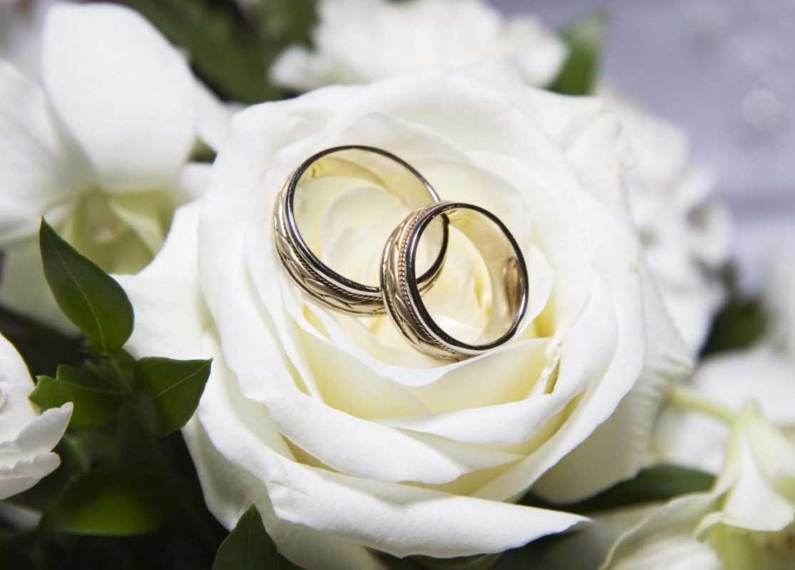 svadba-v-belom-tsvete-9 Украшение зала на свадьбу в белом цвете, как организовать, чтобы торжество не получилось скучным и блеклым