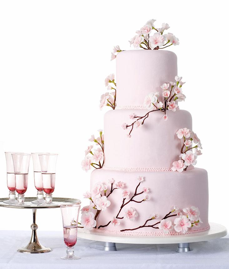 Cake2 Все выше и выше, и выше: как появился многоярусный свадебный торт.